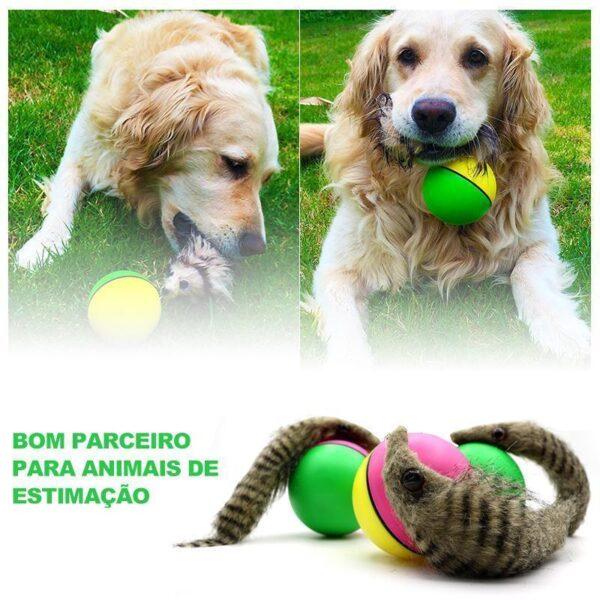 Bola de Doninha para Animais de Estimação - Loja Oficial | XploudShop